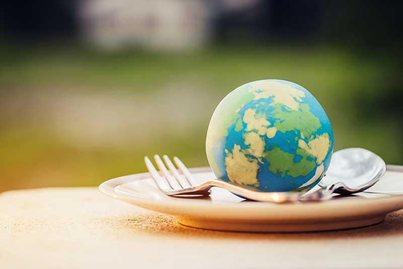 世界の食品廃棄減の取り組み