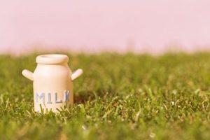 子どもに牛乳は必要か(1)~アメリカの消費量は減少傾向!!~