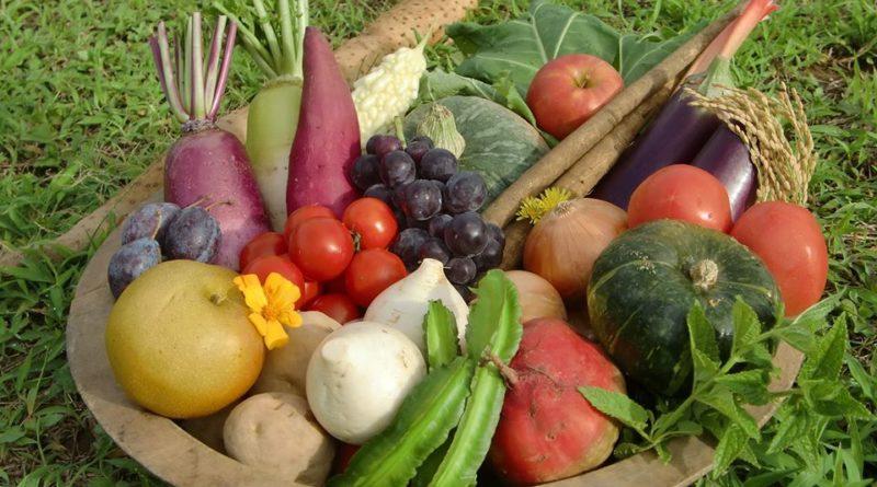 野菜のカネマツ