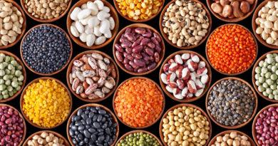 栄養満点な豆は種類も豊富