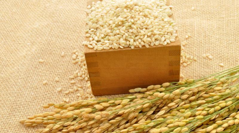 栄養満点!玄米の栄養と美味しいお米の選び方~玄米を知ろう①