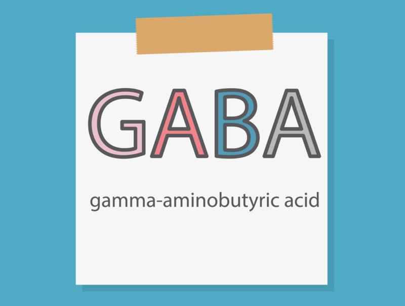 酵素玄米はGABAが豊富