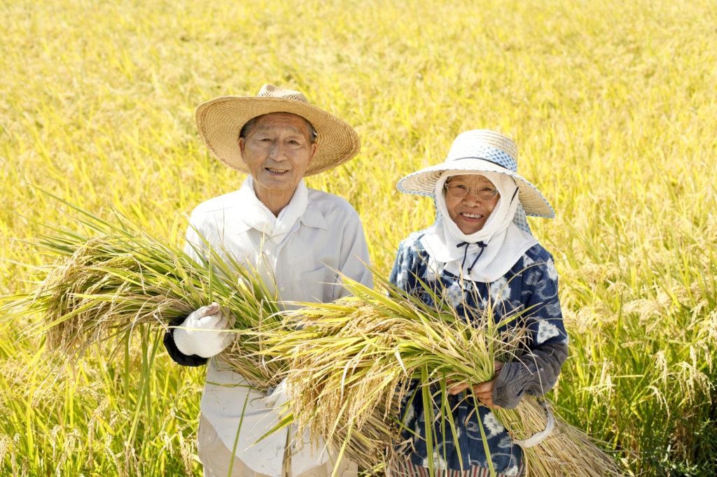 玄米選びに迷ったときは生産者の声を聴こう