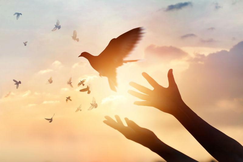 世界マザーサロン理念とビジョン
